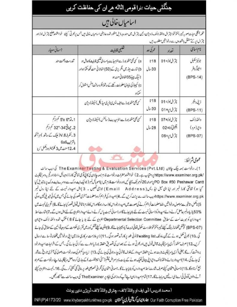 Divisional Forest Officer Wildlife Division Chitral Jobs ETES Roll No Slip